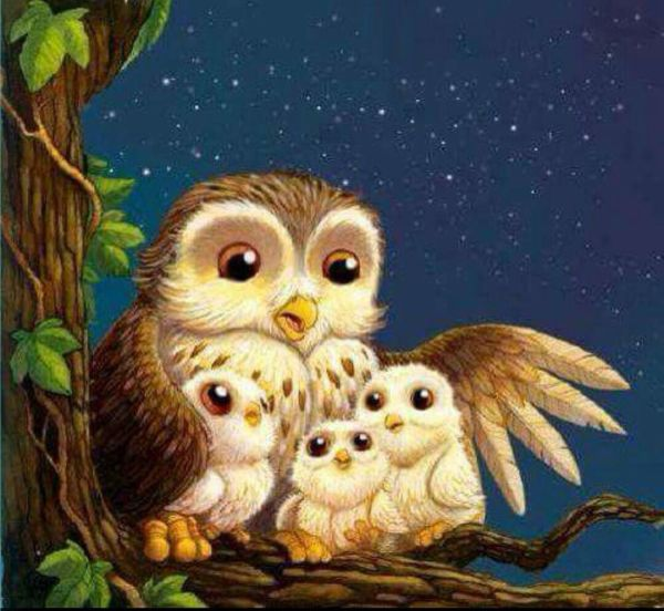 Owl Love Art And Family