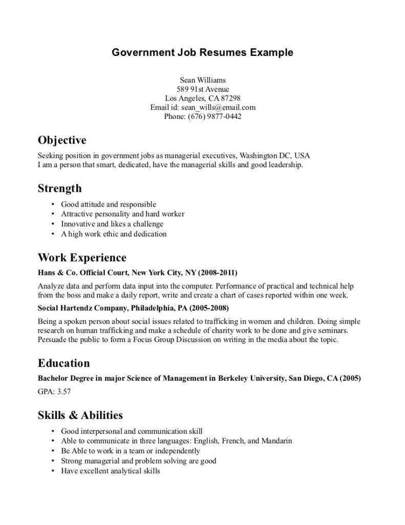 Government Job Resumes Example Image Simple Resume Examples For