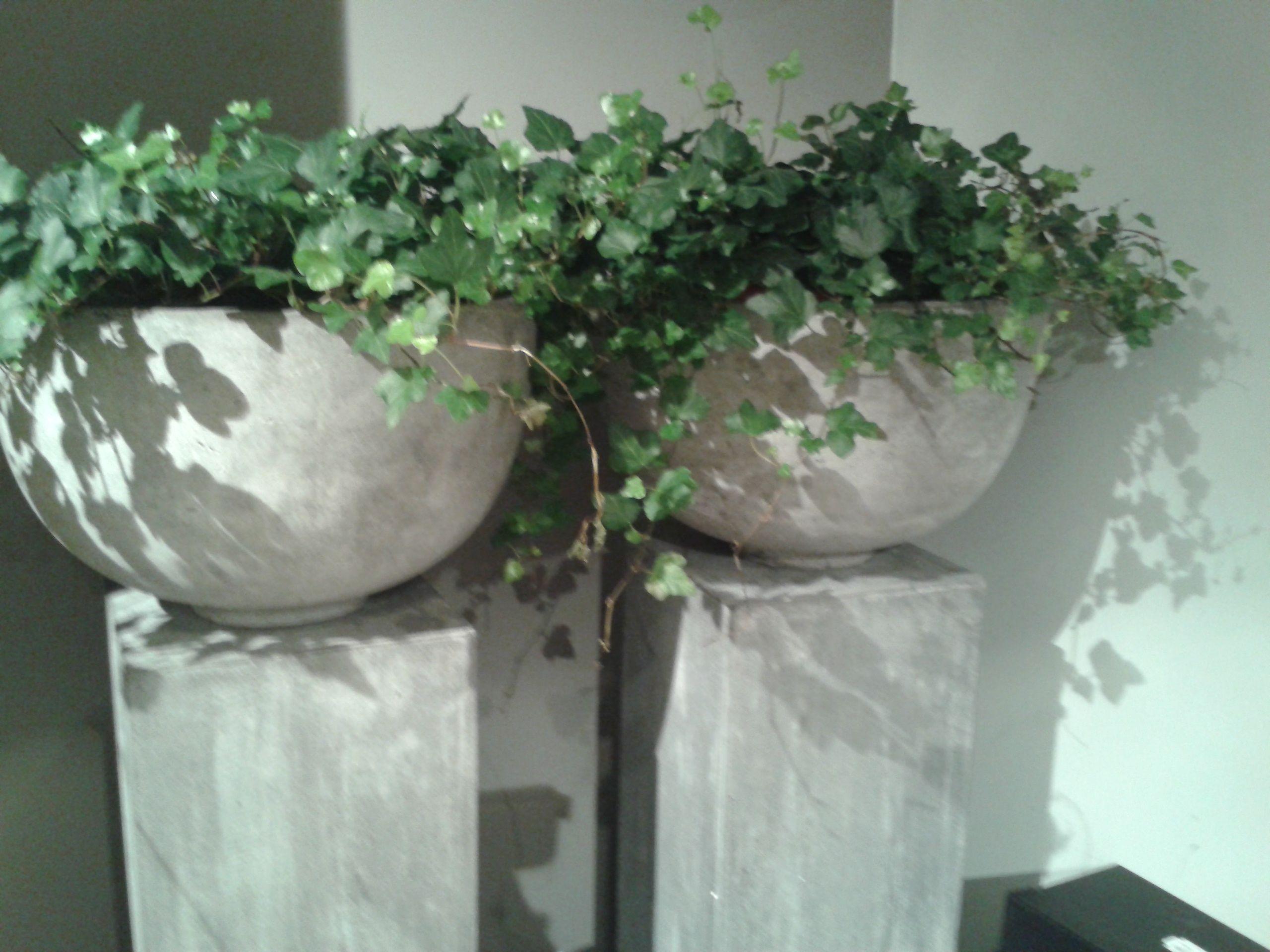 stoere potten op zuil prachtig  binnen planten