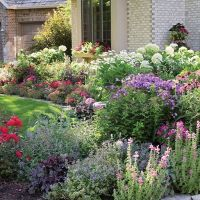 The 25+ best Cottage front yard ideas on Pinterest ...