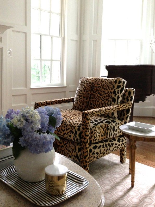 Room also the newest and possibly best thing   ve ever designed leopard rh pinterest