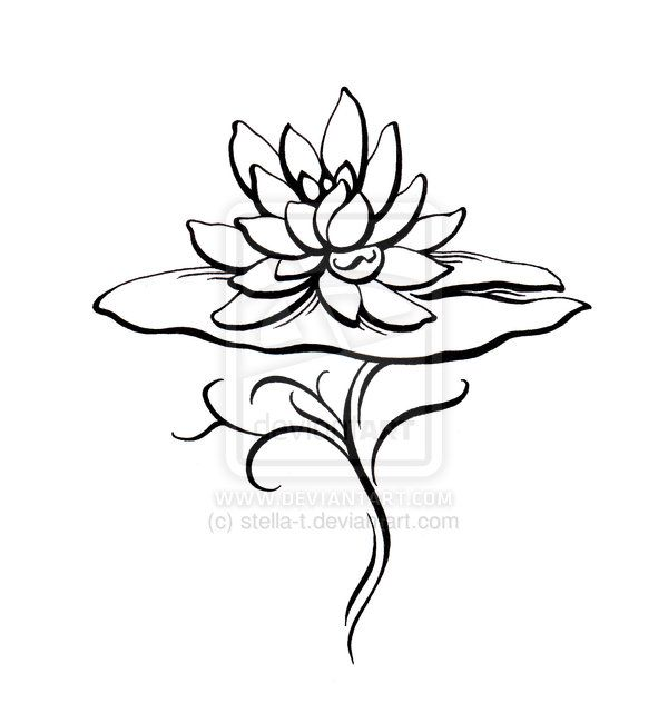 Lotus. Like how it's coming up from the water and lily pad