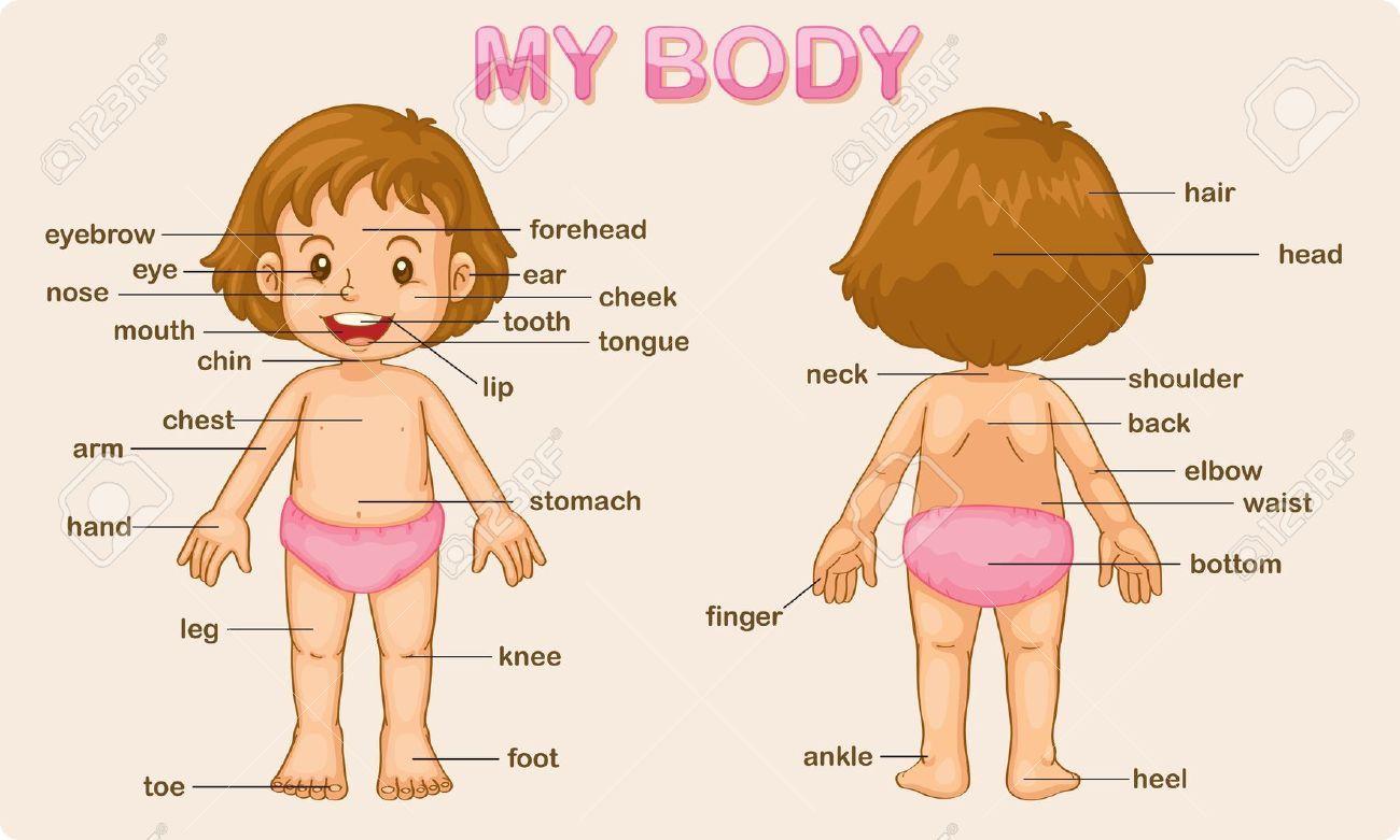 Activities For Preschool