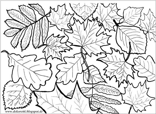 Herbstblätter zum Ausdrucken und selber Ausmalen Doodle