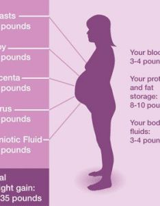 Pregnancy weight breakdown weeks and have gained lbs also this is amazing to think about as you belly grows with the life rh pinterest