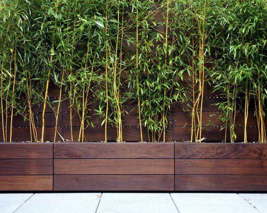 pflanzen topfen kubeln terrasse innovative idee von