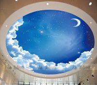 Star ceiling circular woven wallpaper ceiling wallpaper ...