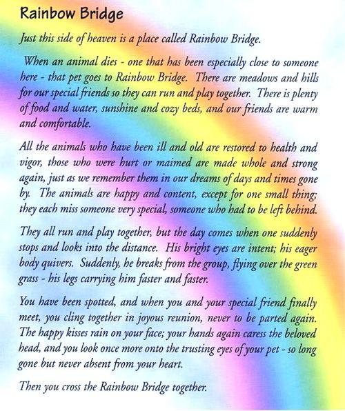 Dogs Version Rainbow Bridge Printable Poem
