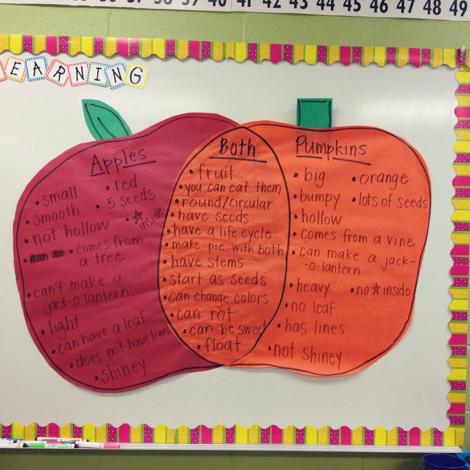 venn diagram bulletin board australian caravan wiring apple great for nutrition education