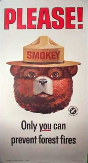 Smokey Bear Forest Fires Stop