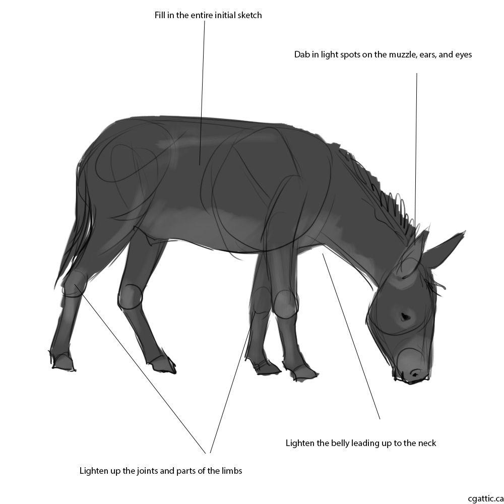 Easy Draw Donkey Heads