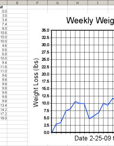 Sample weight loss chart documents in pdf also printable blank zrom rh polkom