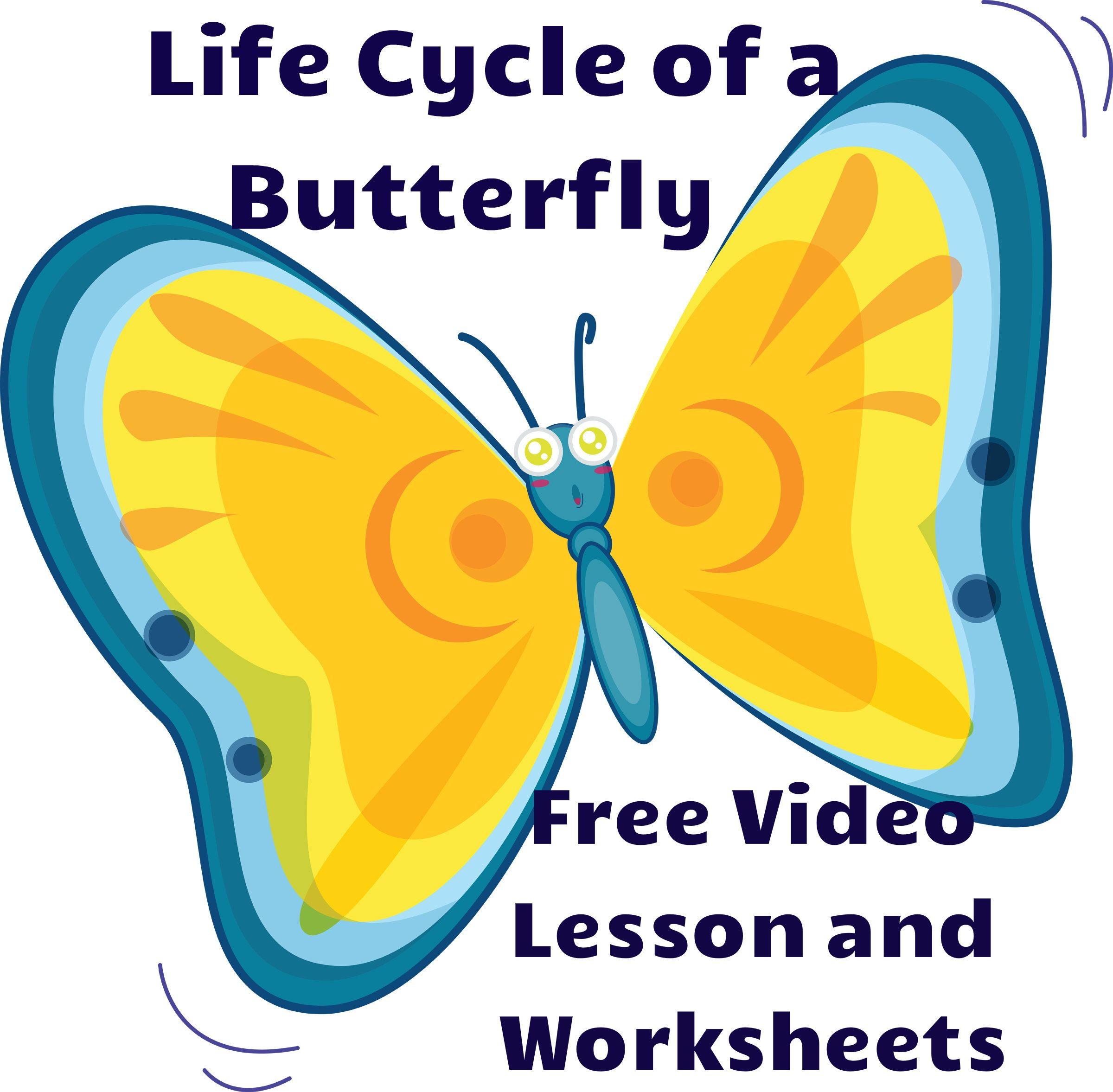 Life Cycle Of A Butterfly Free Video Lesson And