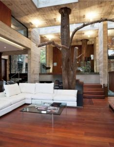 Ever wanted to live in  tree house located guatemala the architecture of this beautiful concrete also corallo is built into richly wooded hillside rh za pinterest
