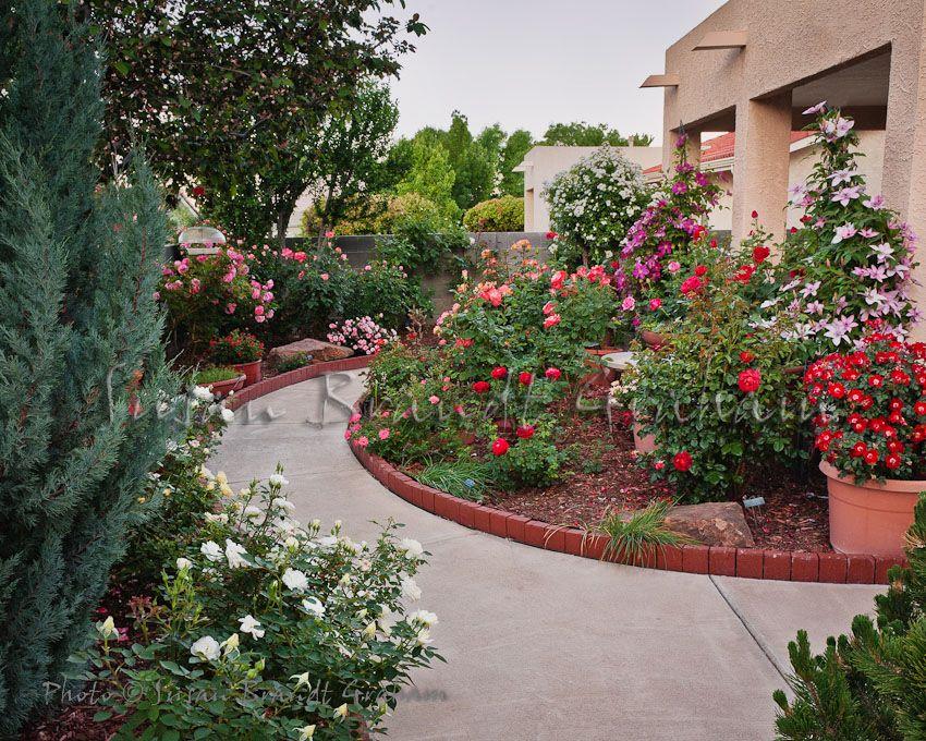 Small Garden With Roses Desert Garden Ideas Pinterest