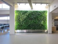Amazing Green Wall Decorating with Live Plants | Living ...