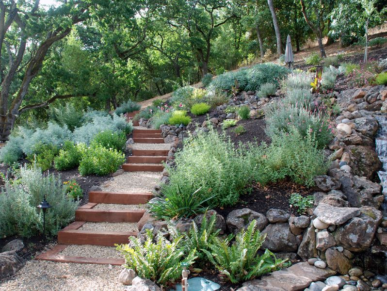 Drought Tolerant Green Gardens  Drought tolerant Green