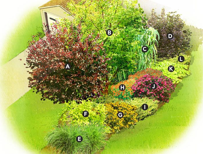 Quick Privacy Garden Plan This Mix Of Trees Shrubs And