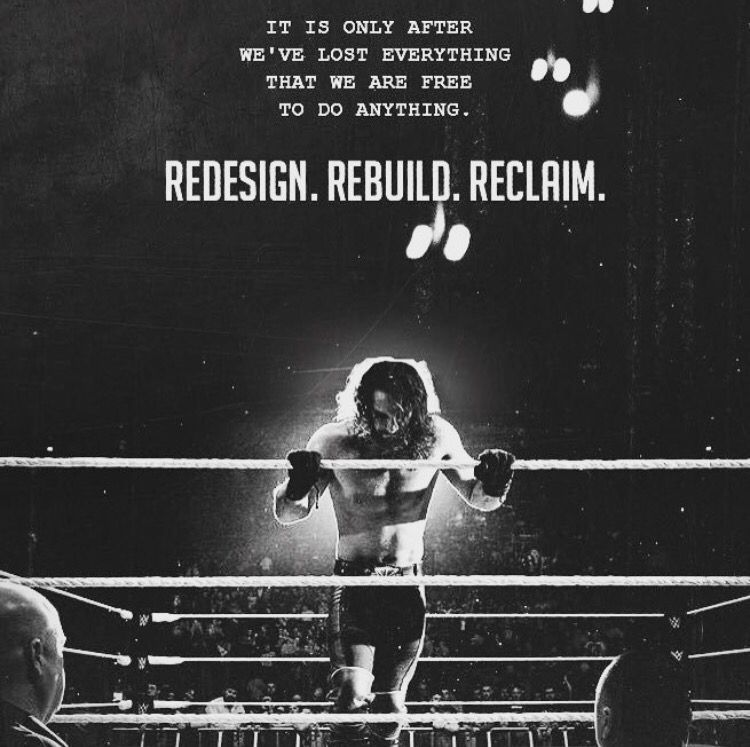 Down Seth Rollins Burn It Quotes