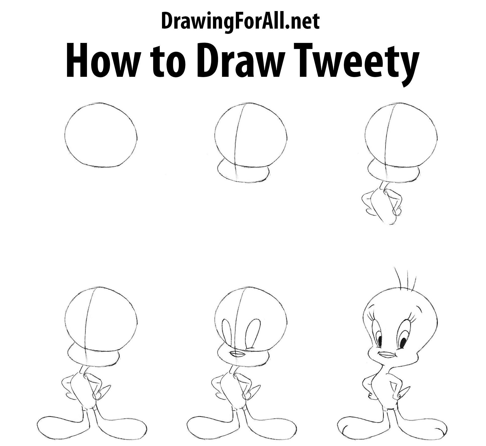 Easy Drawing Of Tweety Bird Gallery Birds To Draw For Kids