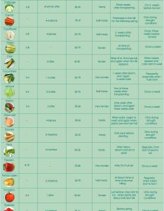 Growing plants and food can be so overwhelming use this simple chart vegetables with info about watering fertilizing seeds also when to plant veggies yard  garden pinterest rh