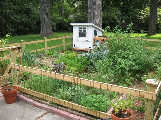 Vegetable Garden Fencing Ideas For Your Inspiration Vegetable