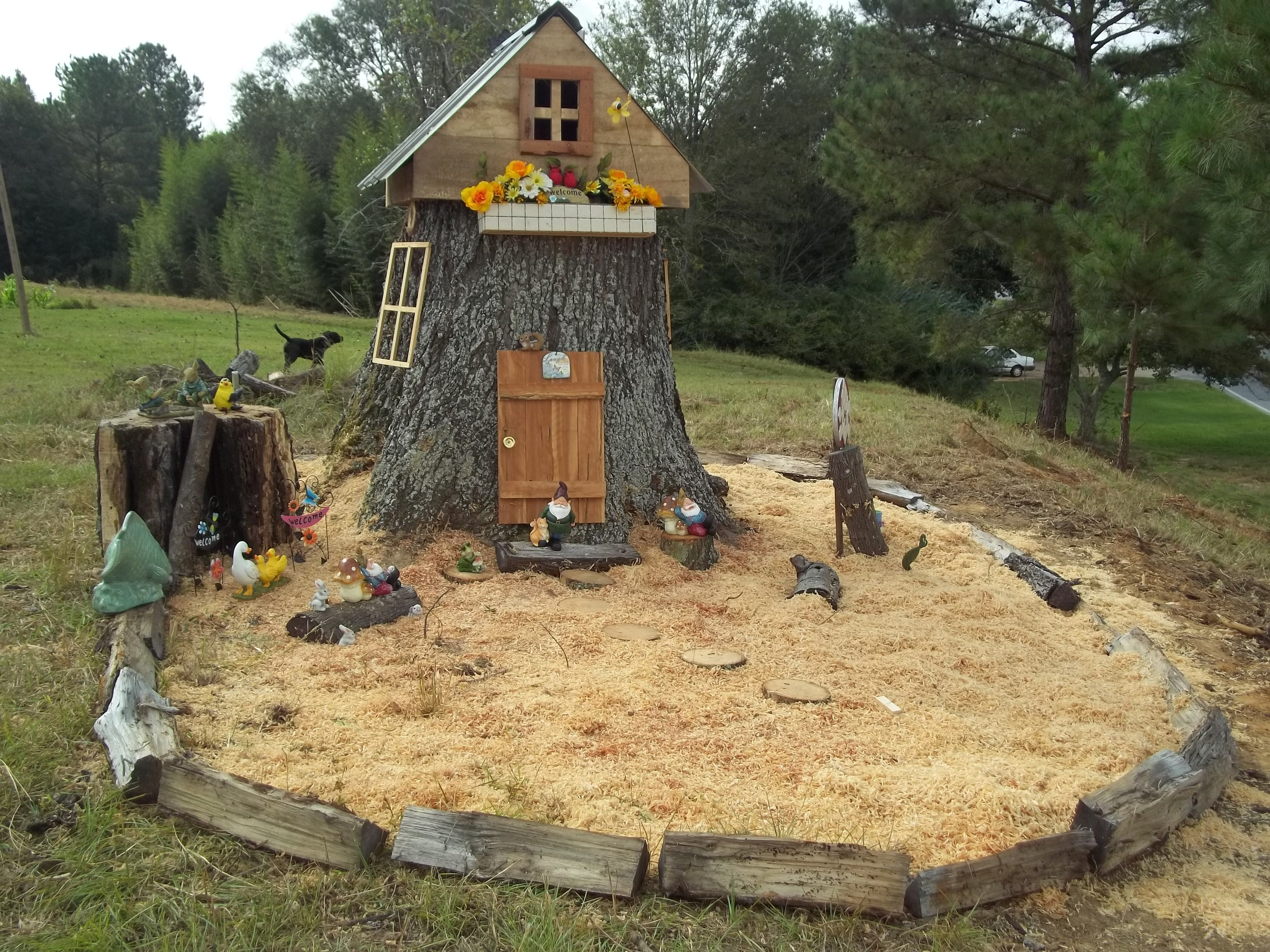 What to do with a old tree stump in your yard.