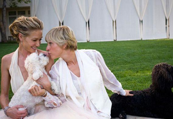 Ellen DeGeneres's Maltese-poodle Mix, Wolf, Was Front And