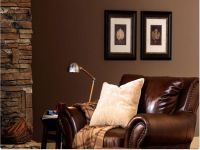 Brown Color Schemes for Living Rooms