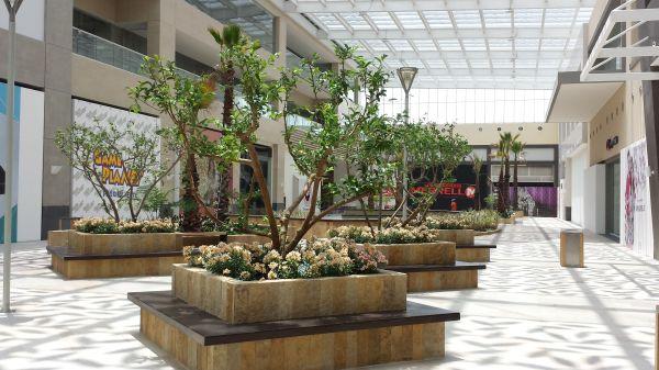 patio santa fe shopping mall mexico