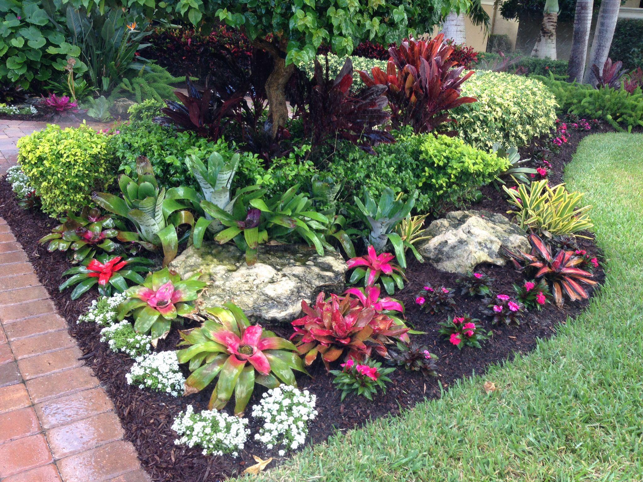 Tropical Bromeliad Garden Design Landscape Designs Pinterest