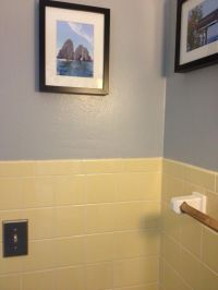 yellow bathroom tile with grey walls | New house ...