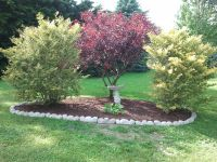 Simple corner landscaping to mark off property line ...