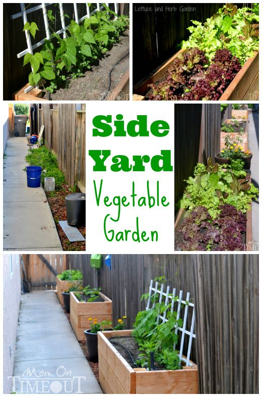 Side Yard Vegetable Garden Small Space Solutions Gardens
