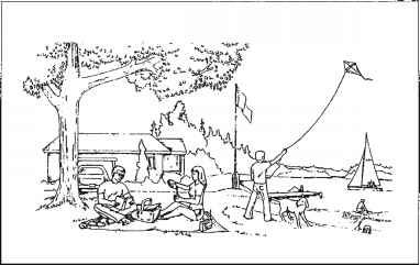 Source: Picnic scene picture from Western Aphasia Battery