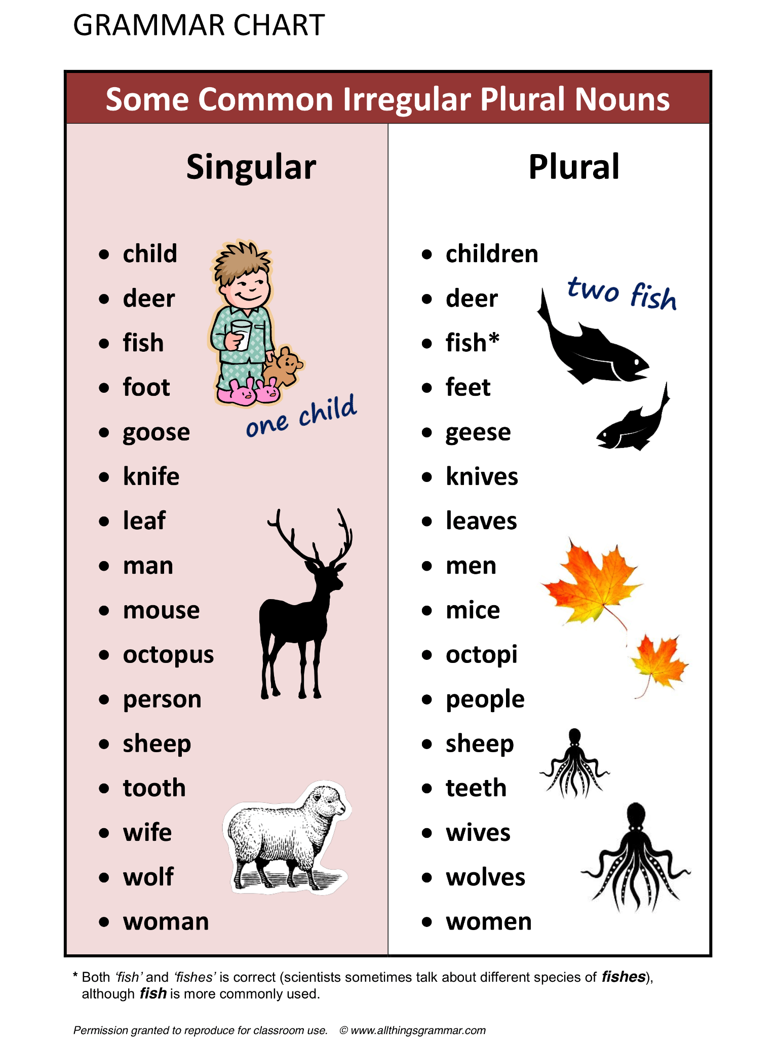 English Grammar Some Common Irregular Plural Nouns Lthingsgrammar Plural Singular