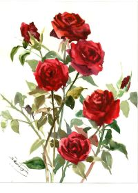 Dark red roses, Deep Red, Red wall art, Original ...