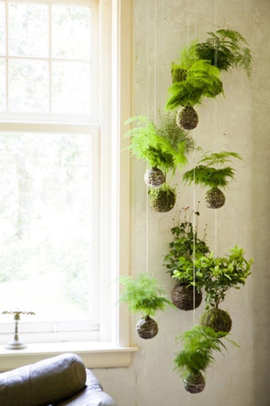 Mini Lamp Near Window Also Hanging Indoor Gardening Idea Plus