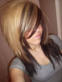 Pics For > Two Tone Hair Color Blonde On Top Brown On Bottom
