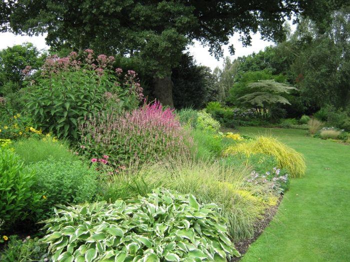 Mixed Shrub Border Design Gardens Pinterest Landscaping