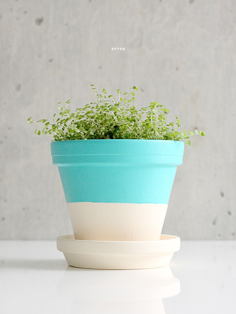 Easy DIY Projects Painted Pots Pick Your Color Paint And Let Dry