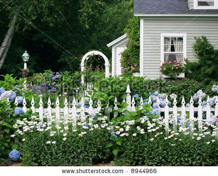 Google Image Result For Image Shutterstock Com