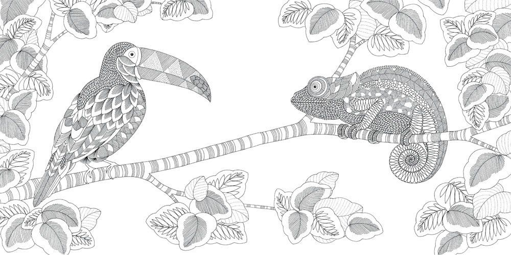 Millie Marotta's Animal Kingdom, A Colouring Book