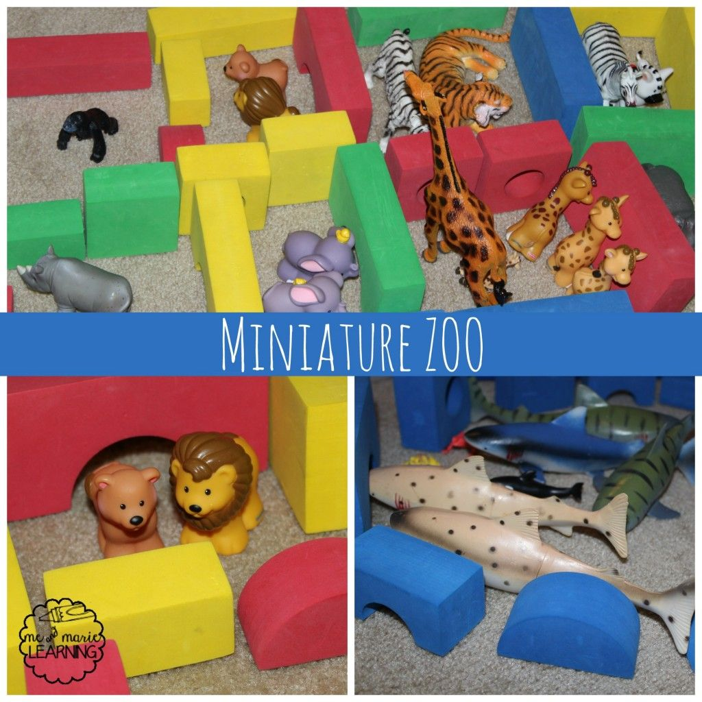 Build A Miniature Zoo