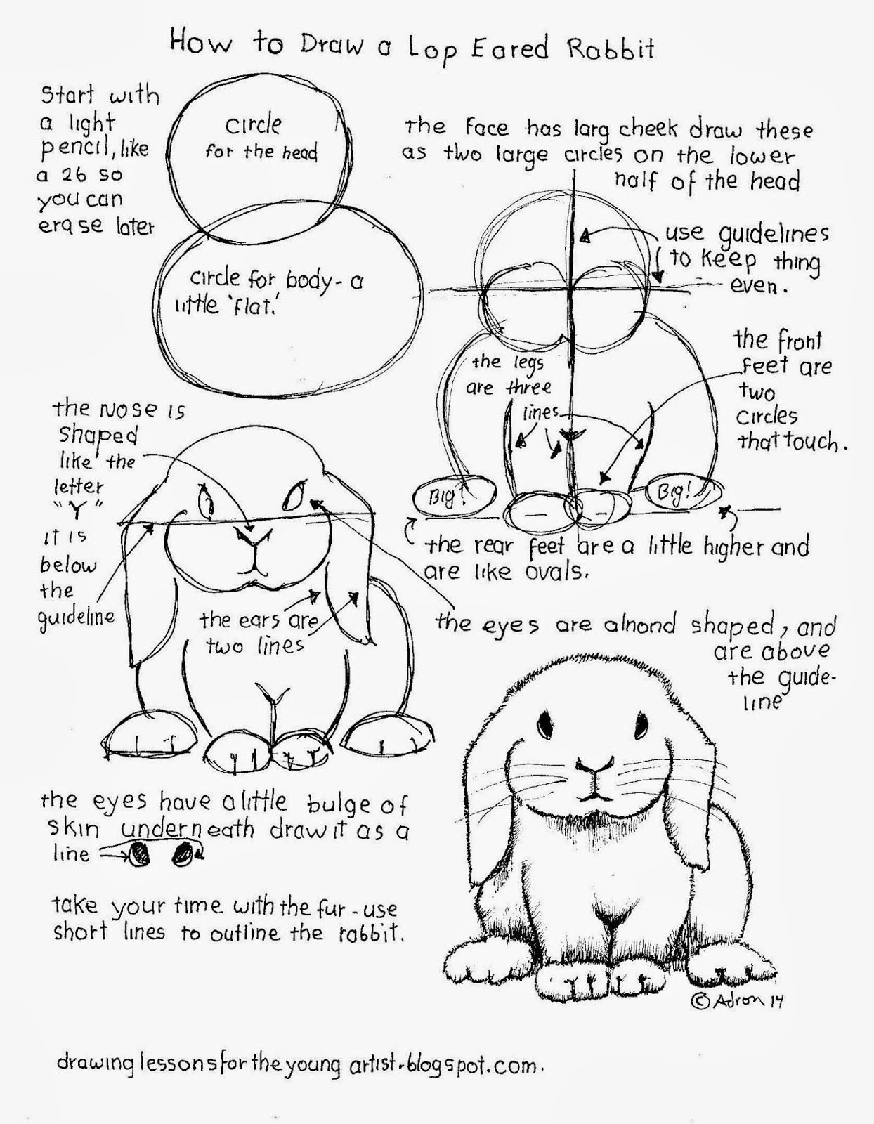 How To Draw A Lop Eared Rabbit Worksheet See More At My