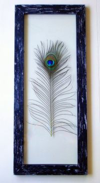 Genuine Peacock Feather Framed Wall Art | Glasses, Rustic ...