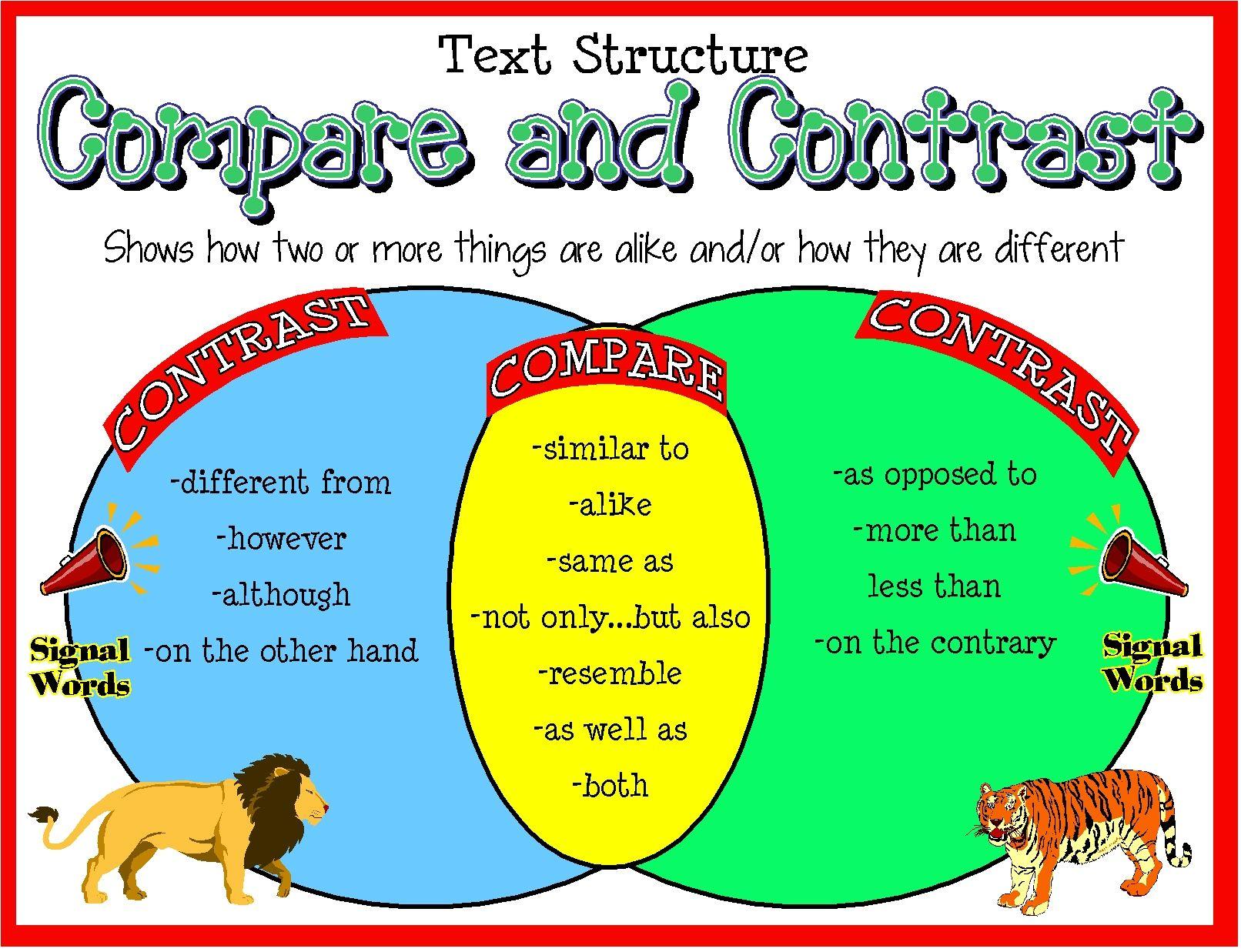 cinderella venn diagram compare contrast printable computer keyboard signal words poster reading ideas