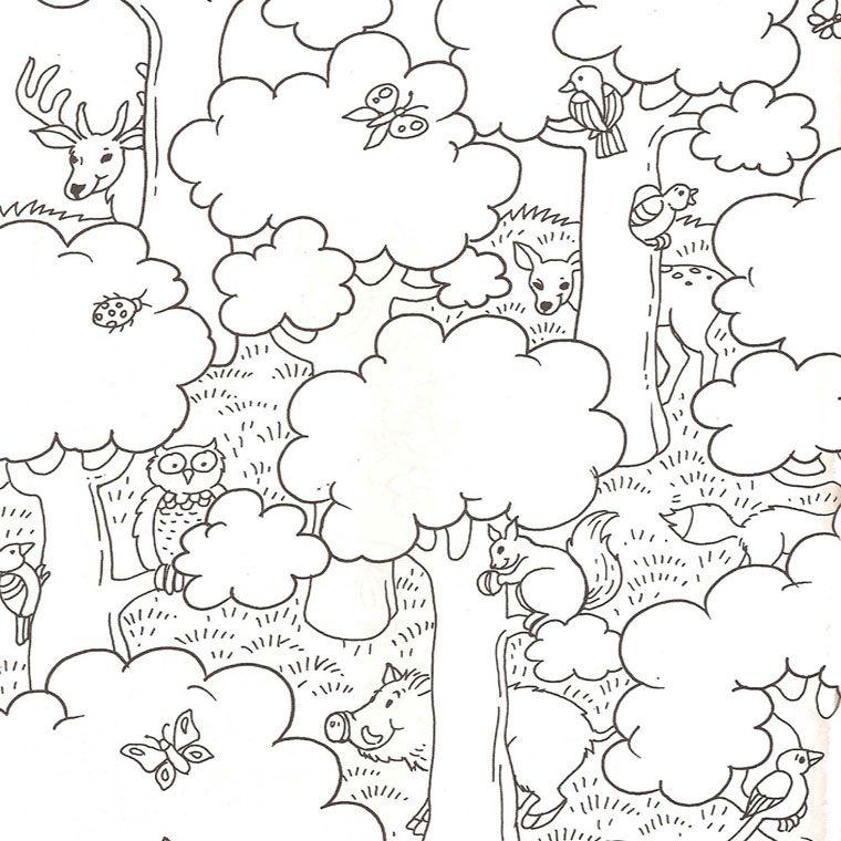 Coloriage Nature Et Animaux A Imprimer Gratuit