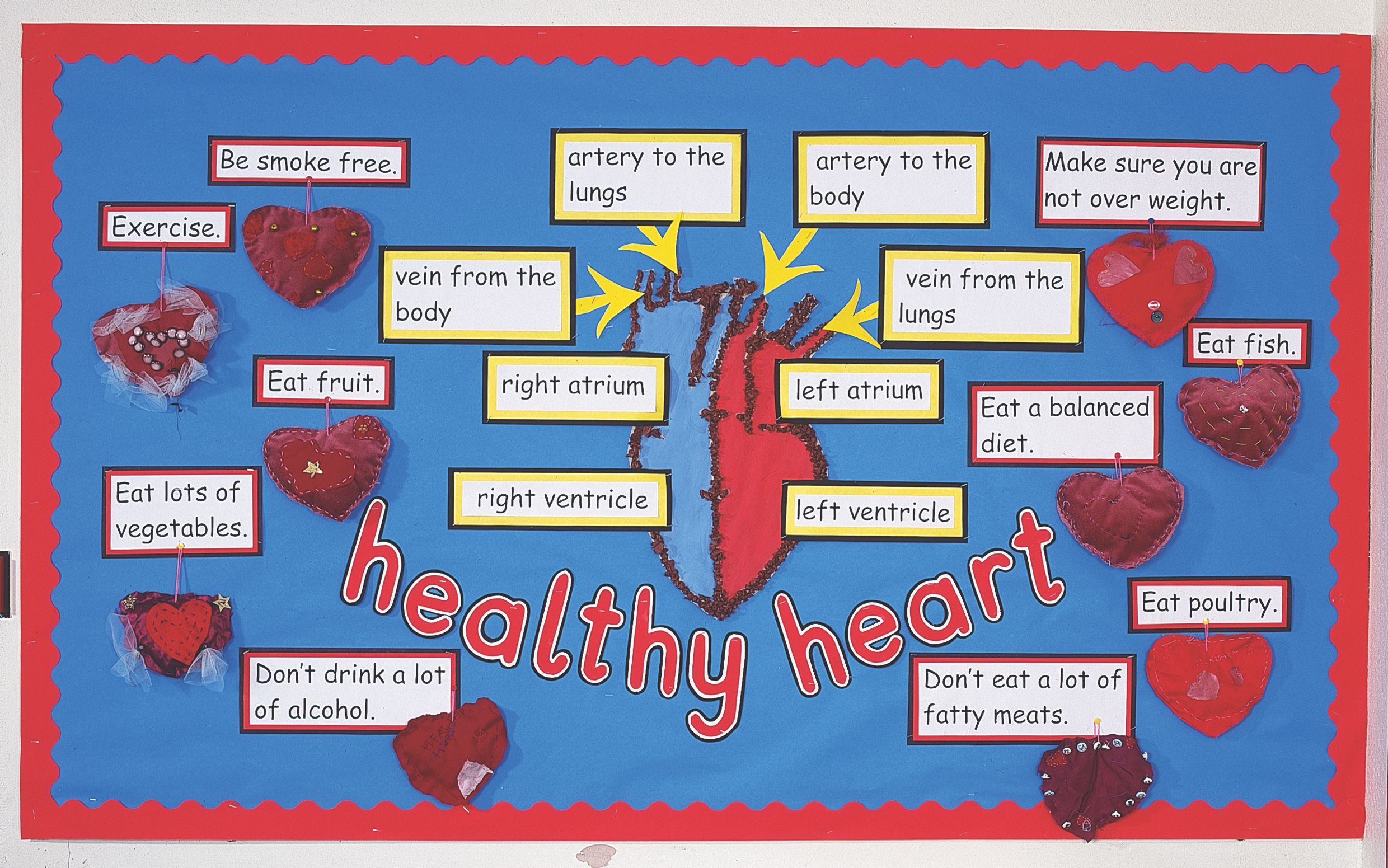 How Do You Keep Your Heart Healthy