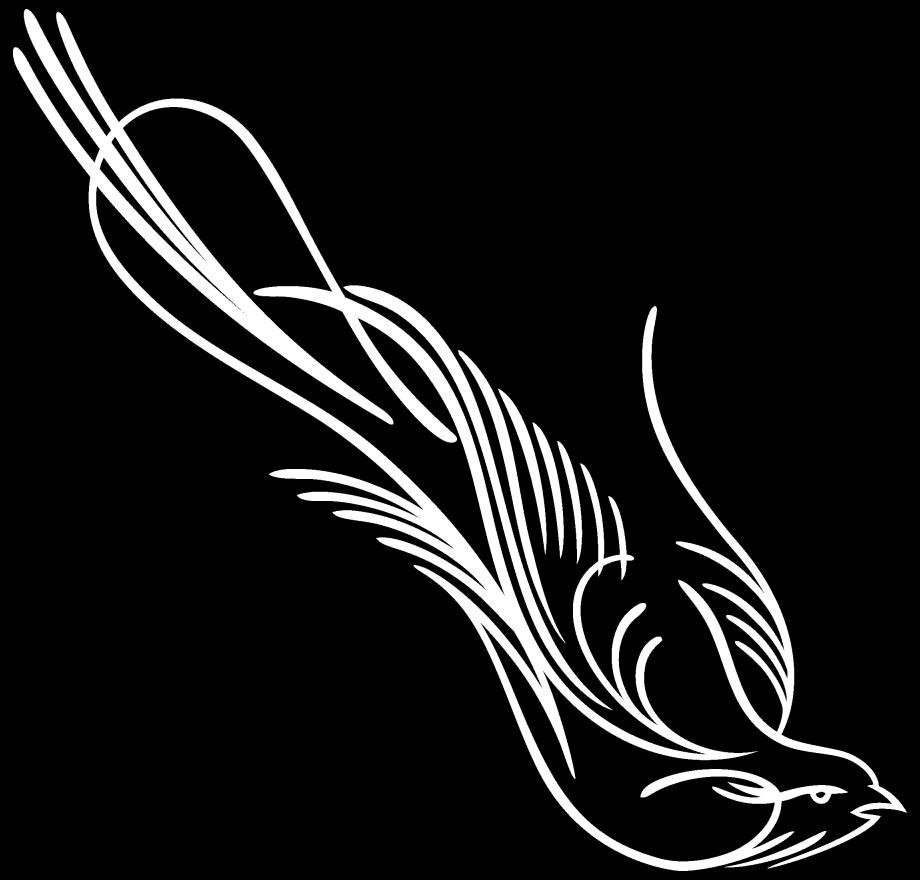 corner pinstripe decals
